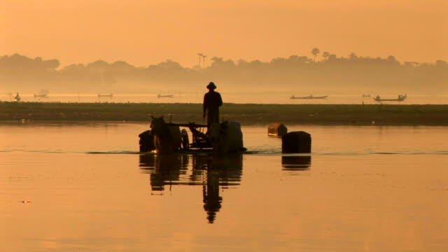 silhouette of man riding on buffalo cart - myanmar stock videos & royalty-free footage