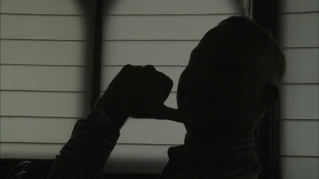 CU Silhouette of man sitting on verandah, Brussels, Belgium