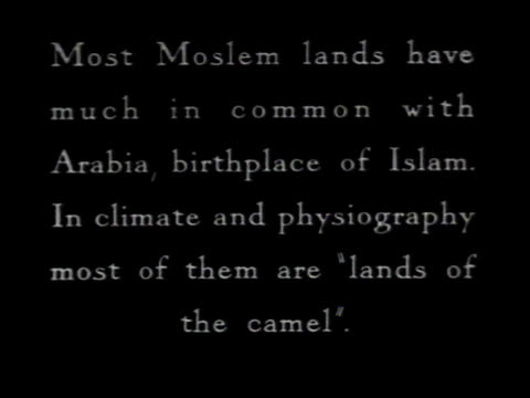 1936 ws silhouette of men on camels passing palm trees - silhouette stock videos & royalty-free footage