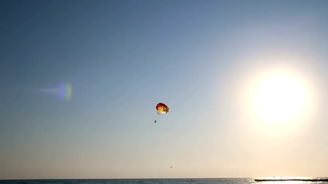silhouette of paraglider soaring over sea at sunset - parachuting stock videos and b-roll footage