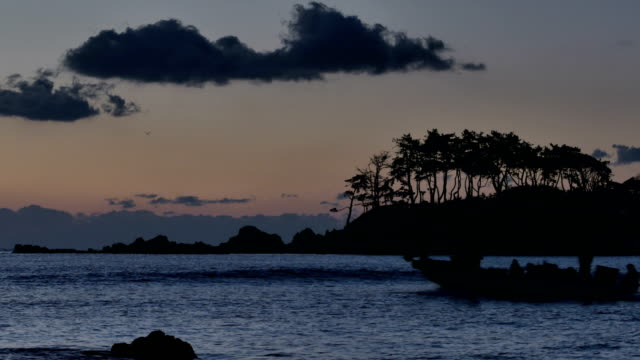 silhouette of pine tree island and a boat near kangyang-port - four animals stock videos & royalty-free footage
