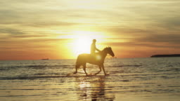Silhouette of Rider on Horse at Beach in Sunset Light.