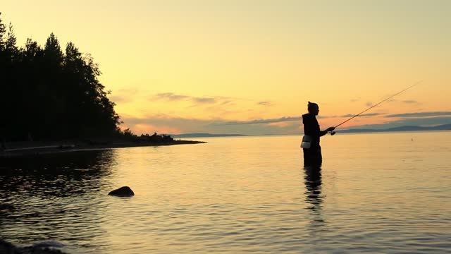 silhouette of solitude girl standing in the fresh water and fishing with a spinning rod in a calm lake at night - walking in water stock videos & royalty-free footage