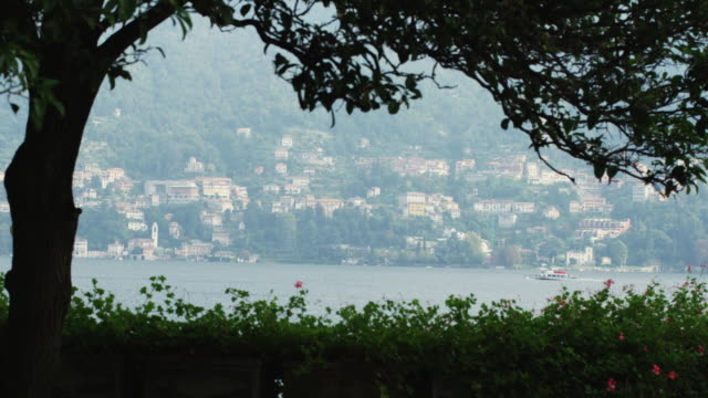 ws silhouette of tree with lake como behind / lake como, italy - coastal feature stock videos & royalty-free footage