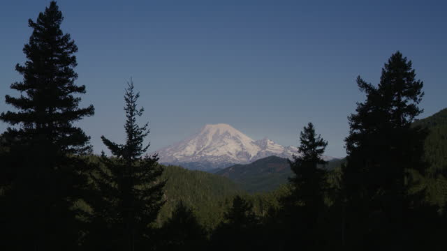 stockvideo's en b-roll-footage met silhouette of trees framing distant mountain with snow / packwood, washington, united states - washington state