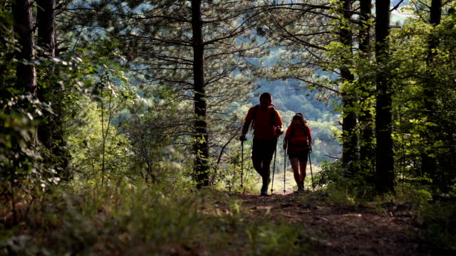 silhouette of two mountaineers walking through forest - young couple stock videos & royalty-free footage