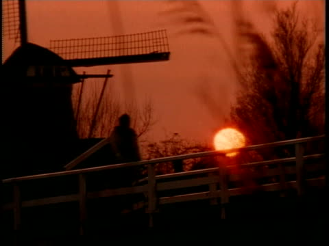 ms, r/f, silhouette of windmill against orange colored sky at sunset seen through bare twigs - unknown gender stock videos and b-roll footage