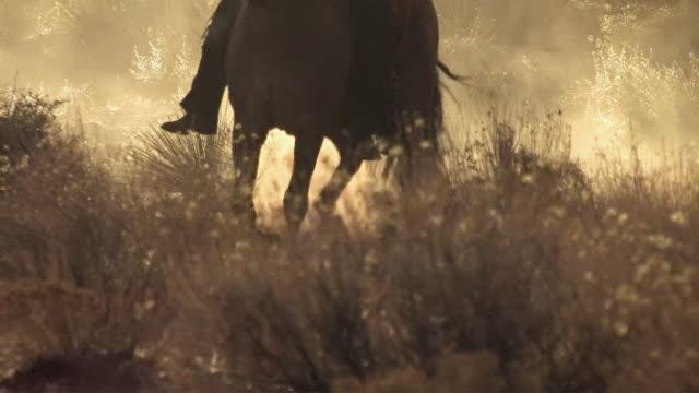 ms, tu, silhouette of  woman riding horse in red desert at sunset, utah, usa - ウェスタン点の映像素材/bロール
