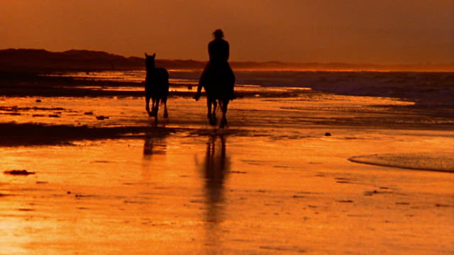 orange silhouette of woman riding towards camera on horse with second horse trailing / ireland - distant stock videos & royalty-free footage
