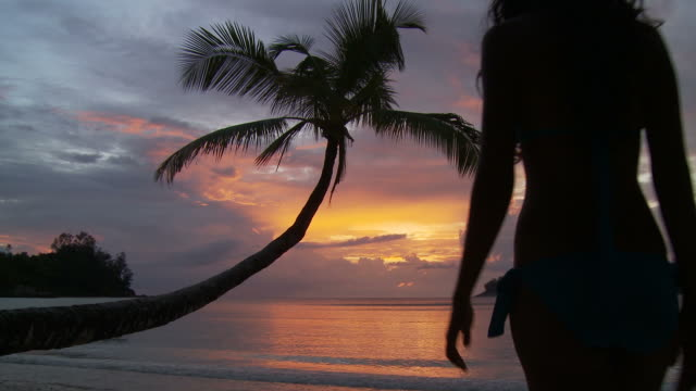 vídeos de stock, filmes e b-roll de ws silhouette of woman wading in ocean at sunset / seychelles - vadear