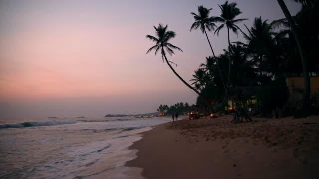 vidéos et rushes de palmiers ms silhouette sur la plage de l'océan tranquille au crépuscule, sri lanka - angle de prise de vue