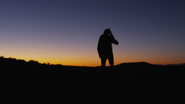 WS PAN Silhouette photographer carrying tripod in desert at sunset / Moab, Utah, USA