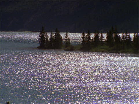 silhouette pine trees on small peninsula in sparkling lake / canada - pinaceae stock videos & royalty-free footage