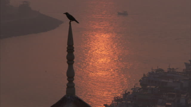 Silhouette shot of a Jackdaw perched on a spire on the roof of the Taj Mahal Hotel with the waterfront behind it tinged orange and pink from the dawn...