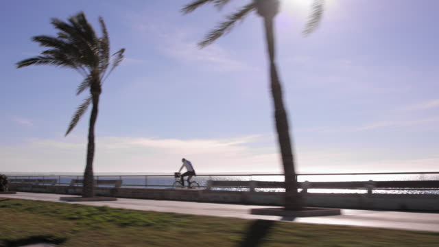 silhouette shot of driving by palma's seaside promenade avinguda de gabriel roca / avinguda d' adolfo suárez on a glaring sunny day in january, passing by cyclists, joggers, pedestrians and palm trees. - mittelmeer stock-videos und b-roll-filmmaterial