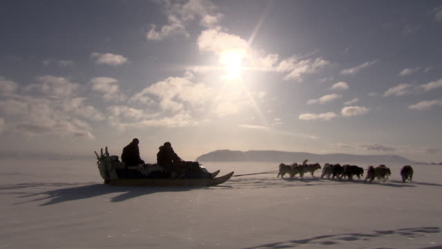 silhouette shot of sled dogs pulling a sledge over the frozen landscape of qaasuitsup in northwestern greenland.  - husky stock videos & royalty-free footage