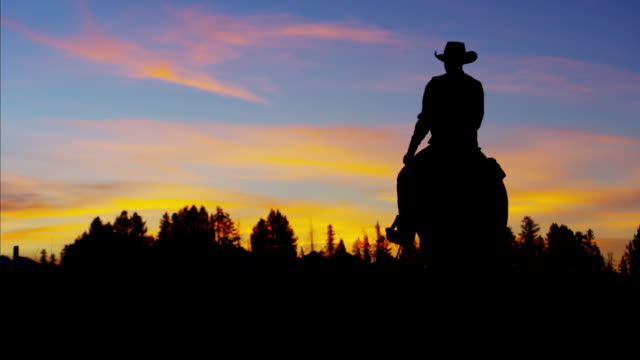 Silhouette sunset of Cowboy Rider forest wilderness Canada
