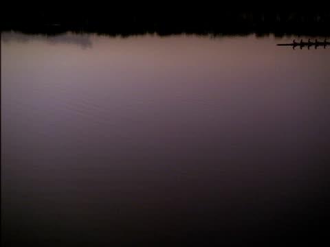 vídeos y material grabado en eventos de stock de silhouetted 8 man crew pass in rowing boat on lake - remo de punta