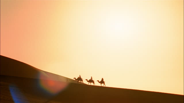 A silhouetted camel caravan travels along a desert ridge.