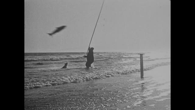 Silhouetted Fatty Arbuckle and dog fish vigorously in the ocean