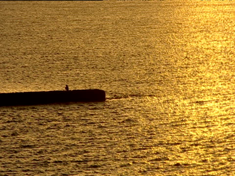 silhouetted man sits on harbour wall surrounded by golden sea india - indischer subkontinent abstammung stock-videos und b-roll-filmmaterial