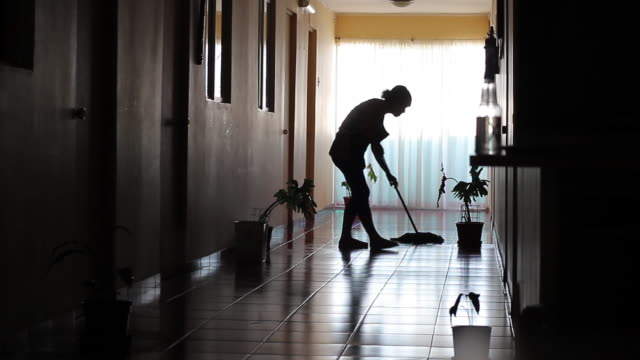 vídeos de stock e filmes b-roll de ms silhouetted woman cleaning hallway floor and shaking plant leaf / tocopilla, atacama desert, chile - limpar