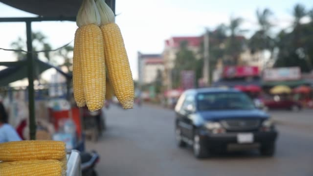 Silhouettes of cooked poultry hang in a roadside cart in Battambang Cambodia on Monday Aug 7 Cobs of corn hang from a roadside cart as traffic drive...