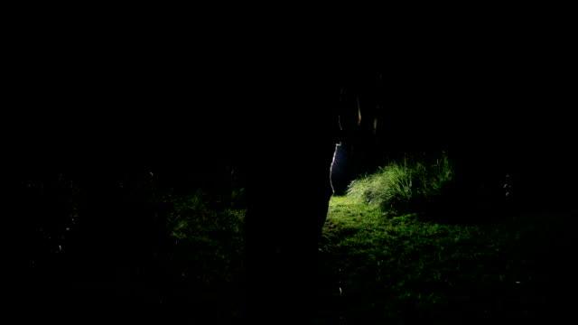 vídeos y material grabado en eventos de stock de siluetas de hombre caminando en la luz - escena rural