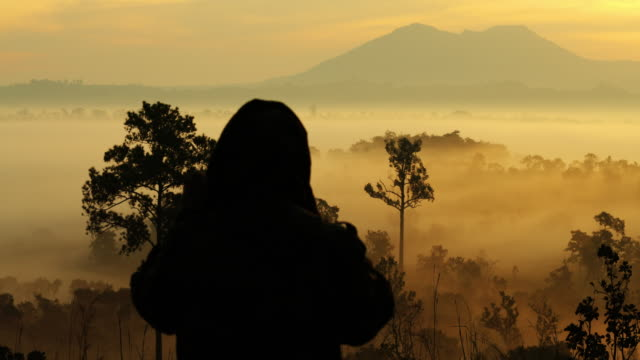 silhouettes of nature photographer in action - slr camera stock videos and b-roll footage