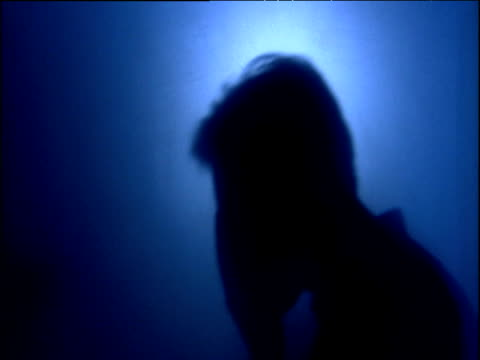 silhouettes of people sneezing against blue background - influenza virus video stock e b–roll