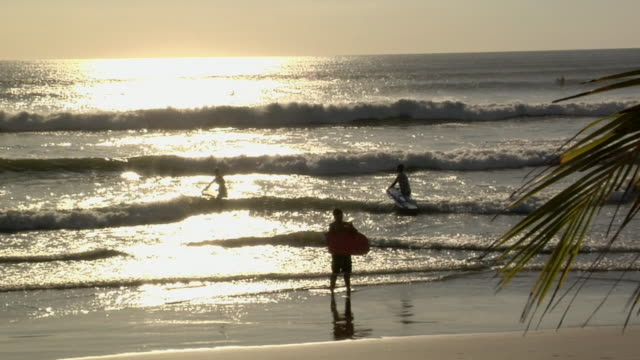 ws, silhouettes of surfers in waves at sunset, nosara, guanacaste, costa rica - nosara stock videos and b-roll footage
