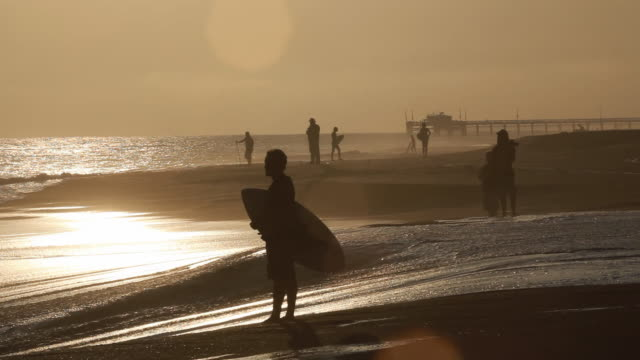 WS Silhouettes of surfers on beach, Newport Beach, Balboa Island, USA