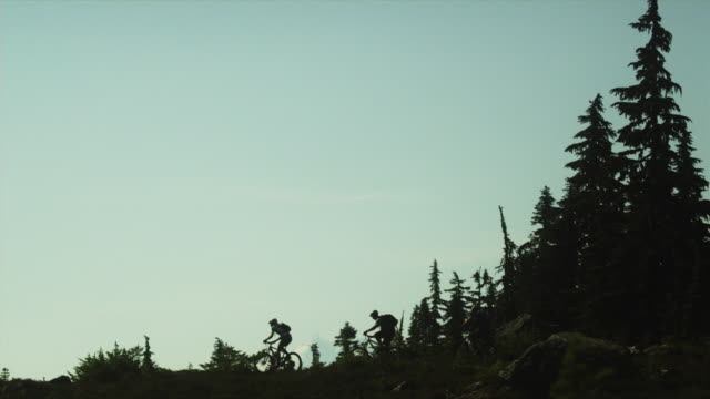 T/L WS Silhouettes of three people cycling across Alpine meadow, Coast Mountains, Squamish, British Columbia, Canada
