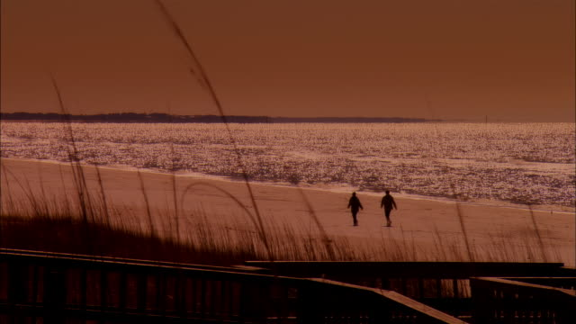 ws, silhouettes of two people walking on beach at sunset, rear view, panama city, florida, usa - viraggio monocromo video stock e b–roll