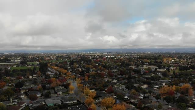 silicon valley california autumn with ginko trees - san jose california stock videos & royalty-free footage