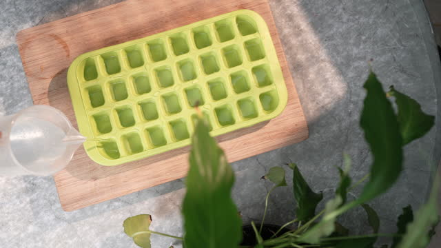 silicone ice cube tray - bamboo plant stock-videos und b-roll-filmmaterial