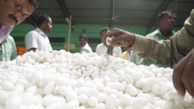 cu silkworm cocoon market at ramanagara, bangalore - indischer subkontinent abstammung stock-videos und b-roll-filmmaterial