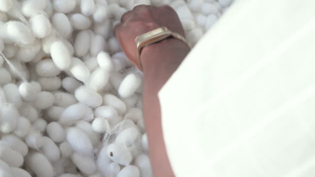 cu silkworm cocoon market at ramanagara, bangalore - material stock videos and b-roll footage
