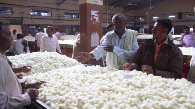 silkworm cocoon market at ramanagara, bangalore - indischer subkontinent abstammung stock-videos und b-roll-filmmaterial