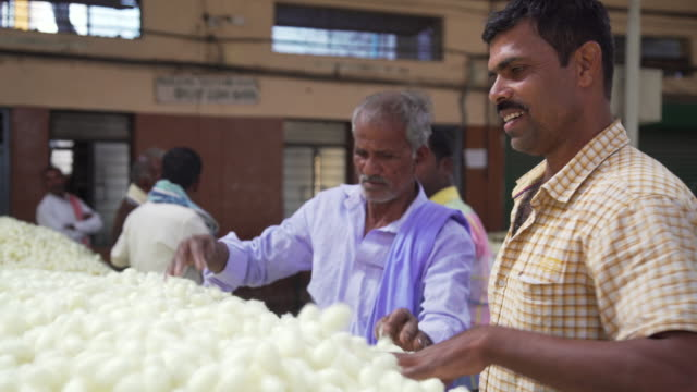 vídeos de stock, filmes e b-roll de silkworm cocoon market at ramanagara. quality control inspectors - vendedor trabalho comercial