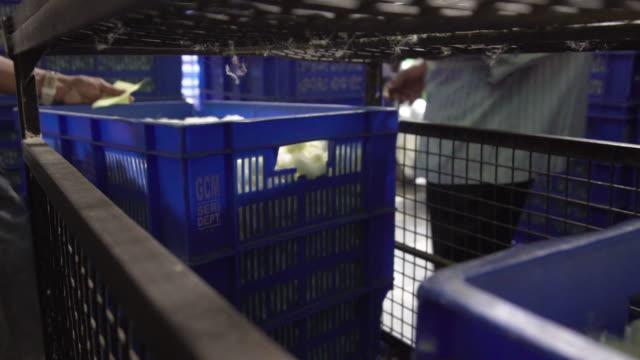 silkworm cocoon market boxes for auction at ramanagara, bangalore - indischer subkontinent abstammung stock-videos und b-roll-filmmaterial