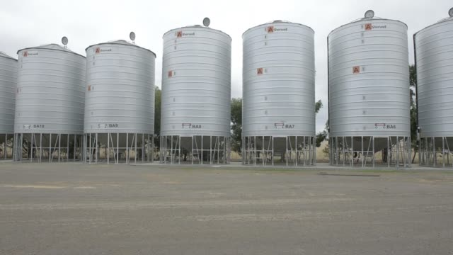 silos used to fumigate grain infected by weevils stand at a riordan group pty grain depot near lara victoria australia on tuesday feb 14 a truck sits... - cereal plant stock videos & royalty-free footage
