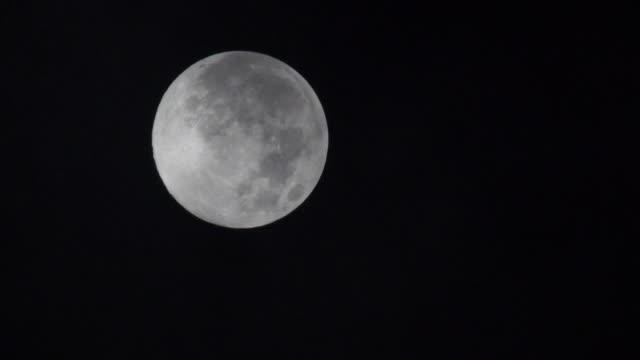 silvery full moon - full moon stock videos & royalty-free footage