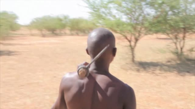 Since he was 14 AlAmin has tapped gum arabic the resin of an acacia tree that thrives in Sudan's conflict states manna from heaven for some a key...