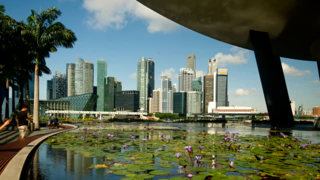 singapore central business district skyline - day lily stock videos & royalty-free footage