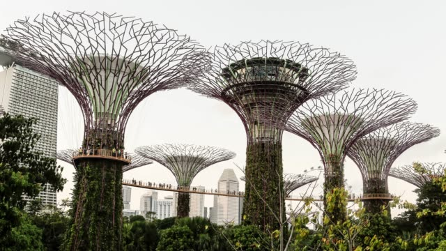 singapore, gardens by the bay - imitation stock videos & royalty-free footage