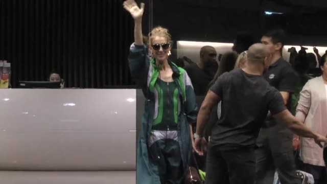 singer celine dion and her families arrive at airport ahead of her concert on july 8, 2018 in taipei, taiwan of china. - セリーヌ・ディオン点の映像素材/bロール