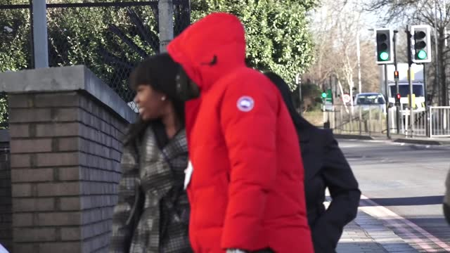 singer lisa maffia arrives back at court following a lunch break at croydon magistrates' court. the 41-year-old allegedly scratched hairdresser... - scratched stock videos & royalty-free footage