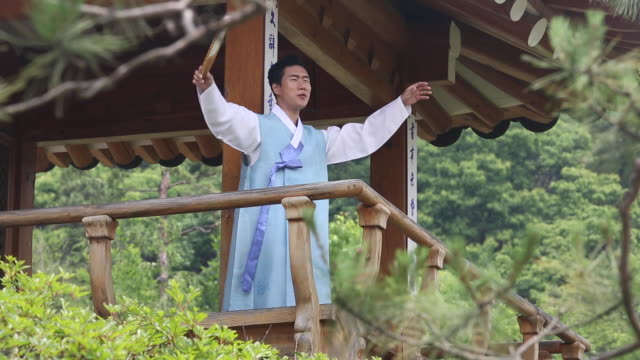 a singer singing pansori (a korean genre of musical storytelling performed by a singer and a drummer) in the gazebo - performing arts event stock videos & royalty-free footage