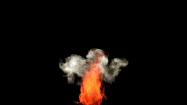 シングル燃え盛る炎 - グレースケール点の映像素材/bロール